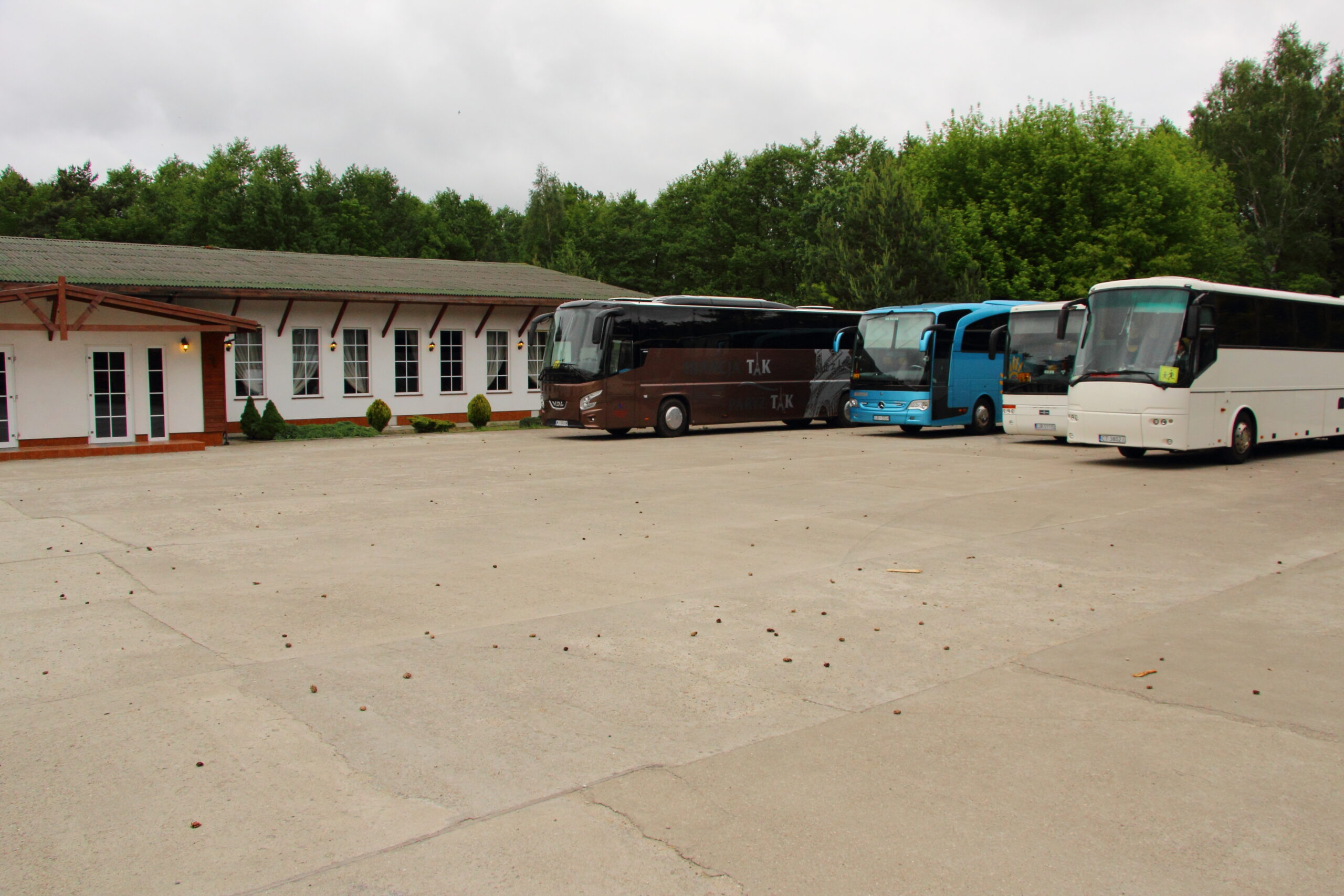 Alma_parking